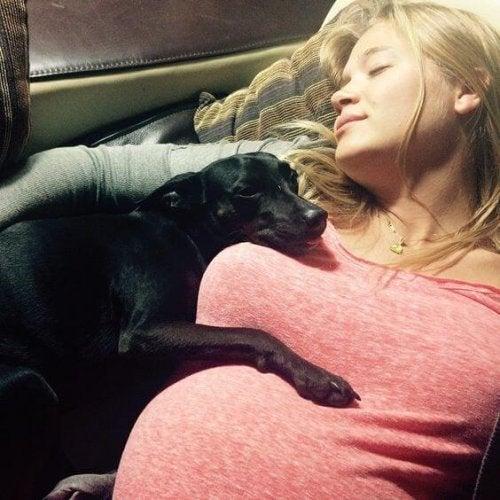 Hond en zwangere vrouw die samen slapen