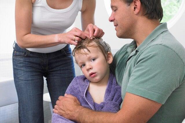 7 tips om hoofdluis te voorkomen en te behandelen