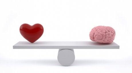 Verstand en hart in balans