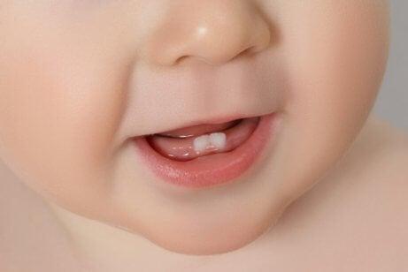 Baby's eerste tandjes: alles wat je moet weten
