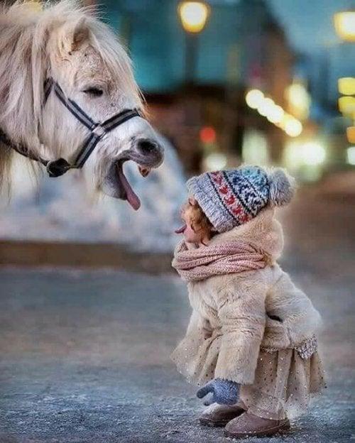 Kindje en paardje steken de tong naar elkaar uit