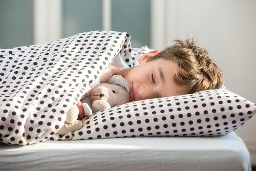 Jongen slaapt met beer