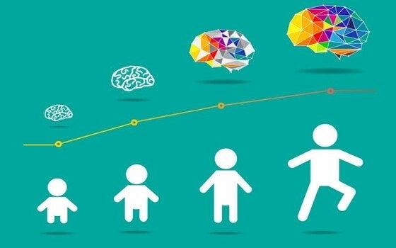 """Hersenontwikkeling bij kinderen komt van """"binnenuit"""""""