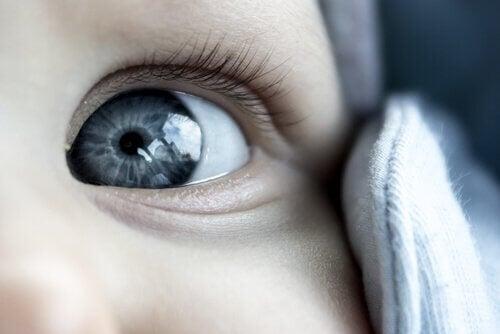 Grijze ogen van een baby