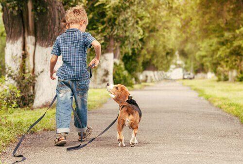 Jongen heeft hond aan de riem
