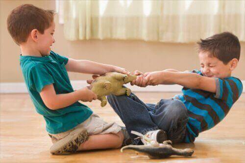 Broertjes vechten om speelgoed