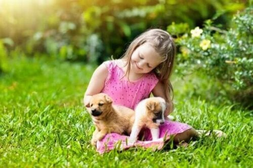 Meisje met puppy's