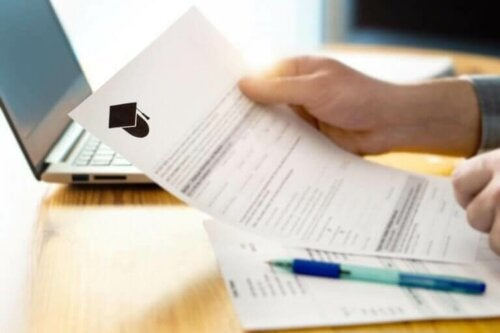 Schoolorganisatie op papier