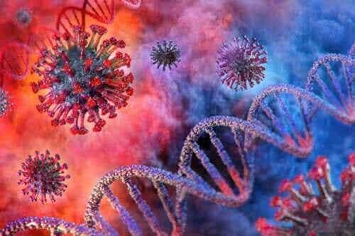 Schoolsluitingen en de verspreiding van het coronavirus