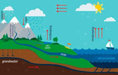 De waterkringloop: hoe leg je het aan kinderen uit?