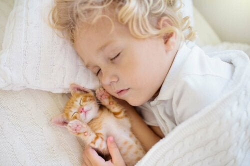 Een baby met een kitten