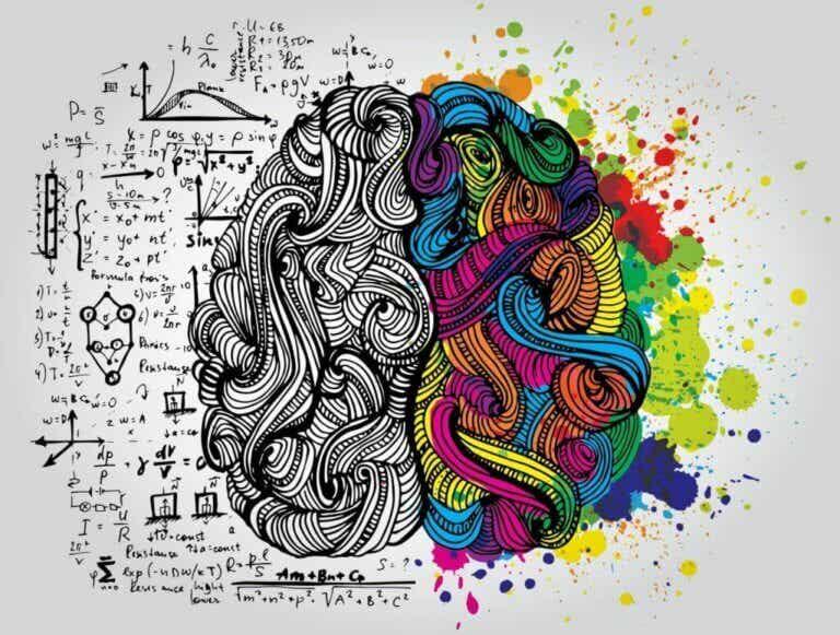 De School of Intelligence van Augusto Cury