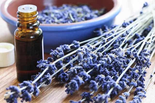 Lavendelolie helpt om te ontspannen