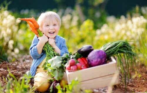 Een veganistisch dieet voor baby's: wat je moet weten