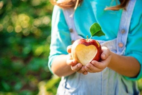 Ontdek 3 voordelen van appels voor kinderen