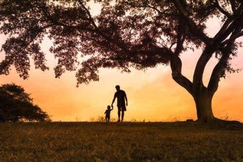 De boom van emoties: wat je moet weten